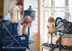 Pet Stroller Collecion