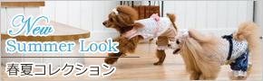 犬服ブランドグラマーイズム(Glamourism)春夏コレクション♪