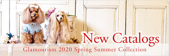 春夏最新カタログ